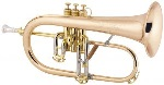 183 Stradivarius Flugelhorn Outfit (lacquer) . Bach