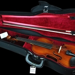 Eastman CA1301C 1/2 Size Violin Shaped Case - Black W / Red