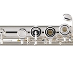 PS55BOF Sonare Flute Outfit (b foot, open cups, offset G) . Powell