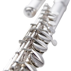AF670-C Alto Flute Outfit (curved headjoint) . Haynes
