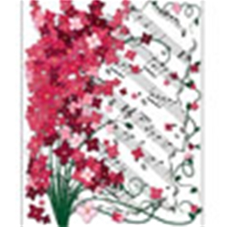 51852 Floral Note Cards (red, 8 count) . Aim